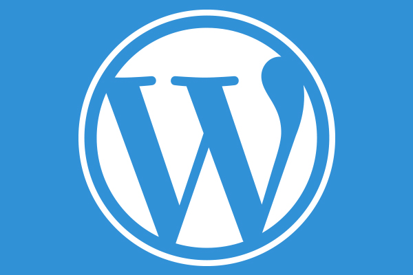 6 Easy Steps to a Successful Business Set Up on WordPress
