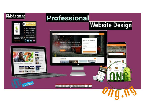 We Design professional website in Lagos