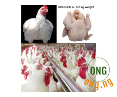 Chicken: Broiler chickens 4 - 5.5 kg