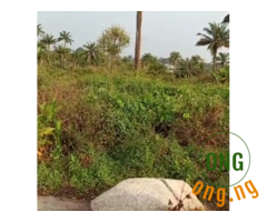 Land property for sale