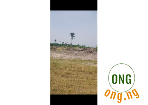 20 Acres Of Land Up For Grab