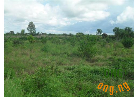 Cheap 80acres of land in ewekoro
