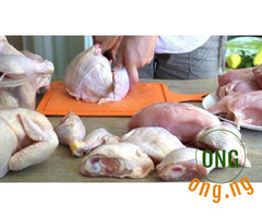 Frozen chicken for sell on retail price
