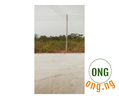 Plot of land (60ft by 120ft) for sale @Adron homes estate
