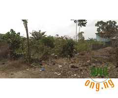 Full Plot of Land at Oko Ewe,ijagba