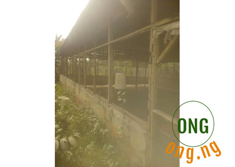 Poultry of one Acre for sale at ilogbo ota