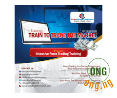 Training in Forex Trading