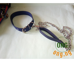 Dog Leash with Chain and collar