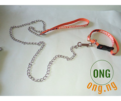 Puppy Chain leash with collar