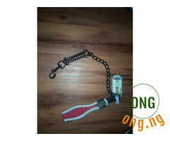 Dog leash with spring