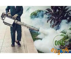 Fumigation and disinfection services
